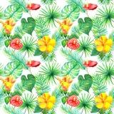 热带叶子,异乎寻常的花 无缝密林的模式 水彩 库存照片