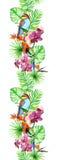 热带叶子,异乎寻常的鸟,兰花开花 无缝的边界 水彩条纹 免版税库存图片