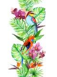 热带叶子,异乎寻常的鹦鹉鸟,兰花开花 无缝的边界 水彩条纹 库存照片