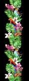 热带叶子,异乎寻常的鹦鹉鸟,兰花开花 无缝的边界 水彩条纹 图库摄影