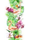热带叶子,火鸟鸟,兰花开花 无缝的边界 水彩框架 免版税库存照片