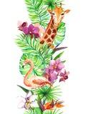 热带叶子,火鸟鸟,长颈鹿,兰花开花 无缝的边界 水彩 库存图片