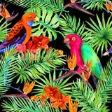 热带叶子,鹦鹉鸟,异乎寻常的花 在黑背景的无缝的密林样式 水彩 库存照片