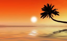 热带图标的日落 库存照片