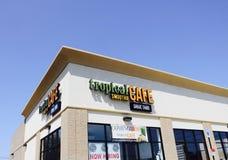 热带圆滑的人咖啡馆 图库摄影