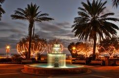 热带圣诞节公园 免版税库存图片