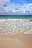 热带在墨西哥海滨del卡门 免版税库存图片