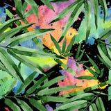 热带在水彩样式的叶子竹树样式 向量例证