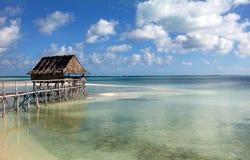 热带场面在有棕榈树的斐济在海洋的日落 图库摄影