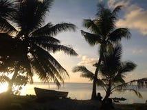 热带场面在有棕榈树的斐济在海洋的日落 免版税图库摄影