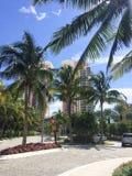热带城市街道 免版税库存照片