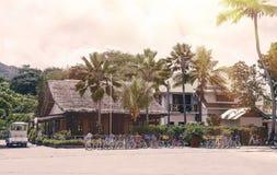 热带塞舌尔群岛 在拉迪格岛Mahe的棕榈树 免版税库存照片