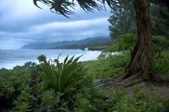 热带处理的海滩的暴雨 免版税库存图片
