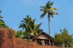 热带夏天小屋和棕榈树在clifftop 库存图片
