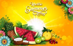 热带夏天果子和花 库存例证