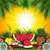 热带夏天果子 库存例证
