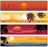 热带夏天横幅 库存例证