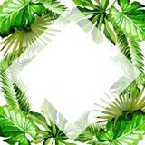 热带夏威夷在水彩样式把棕榈树框架留在 免版税库存图片
