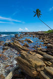 热带多岩石的海滩 免版税库存照片