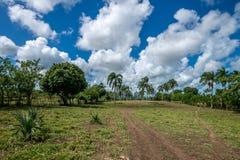 热带多米尼加共和国的横向的共和国 免版税库存照片