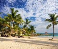 热带天堂。 多米尼加共和国,塞舌尔群岛,加勒比,毛里求斯,菲律宾,巴哈马。 放松在远程天堂海滩。 库存照片