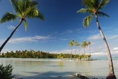 热带天堂。Tahaa,法属波利尼西亚 免版税库存照片