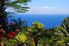 热带天堂哈纳路毛伊夏威夷 免版税库存图片