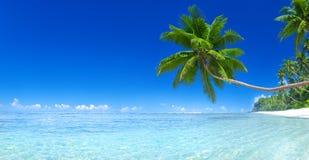 热带天堂海岛海滩海概念 库存图片