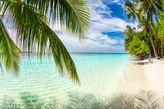 热带天堂海滩白色沙子和椰子树移动旅游业背景概念 库存照片