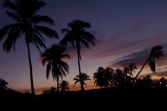 热带天堂的日落 免版税图库摄影
