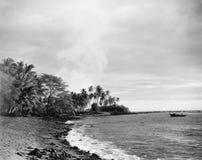 热带天堂(所有人被描述不更长生存,并且庄园不存在 供应商保单将没有mod 免版税库存照片