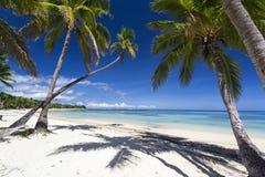 热带天堂 免版税库存图片