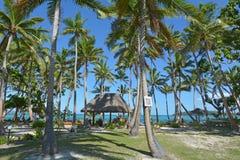 热带太平洋海岛风景斐济 免版税库存图片