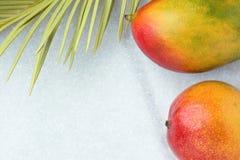 热带太阳之前烧焦的自然背景成熟水多的红色芒果尖刻的绿色淡黄色棕榈叶 健康食物生活方式 免版税图库摄影