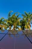 热带太阳电池板 免版税图库摄影