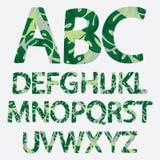 热带字母表由monstera棕榈叶做成 手拉的绿色p 库存照片