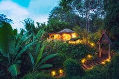 热带家在日落的密林 免版税库存照片