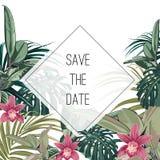 热带密林棕榈树离开与异乎寻常的兰花花在白色背景 向量例证