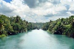 热带密林的河 免版税图库摄影