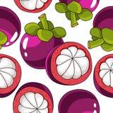 热带山竹果树果子的无缝的传染媒介样式 皇族释放例证