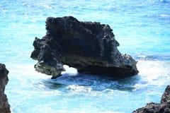 热带岩石海岸线 库存图片