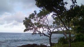 热带岸线 免版税图库摄影