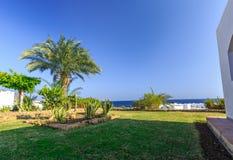 热带度假胜地集合在整洁的被修剪的草坪,埃及 免版税库存照片