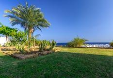 热带度假胜地集合在整洁的被修剪的草坪,埃及 免版税库存图片