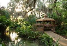 热带庭院的眺望台 免版税库存照片