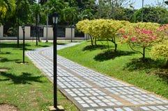 热带庭院的路径 免版税库存照片