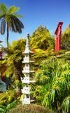 热带庭院,丰沙尔,马德拉岛,葡萄牙 免版税库存照片
