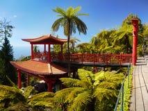 热带庭院,丰沙尔,马德拉岛,葡萄牙 免版税库存图片
