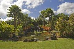 热带庭院h50的天堂 库存照片