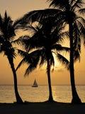 热带开曼群岛的日落 免版税库存照片